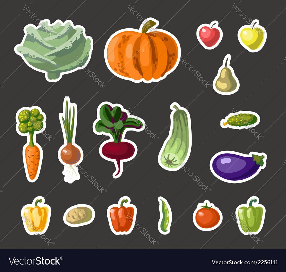 Vintage garden banner with root veggies vector | Price: 1 Credit (USD $1)