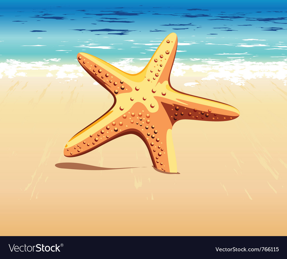 Starfish in the sand vector | Price: 1 Credit (USD $1)