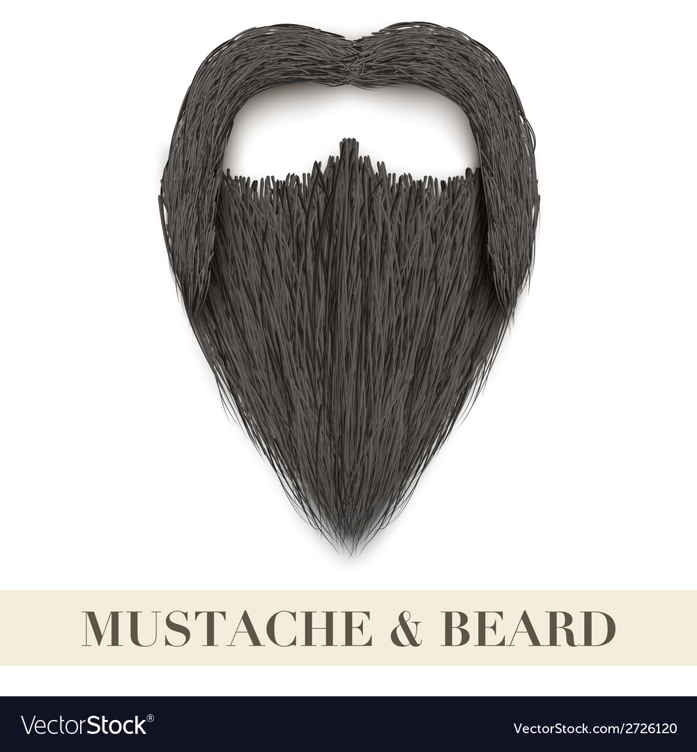 Realistic black beard with curly mustache vector | Price: 1 Credit (USD $1)