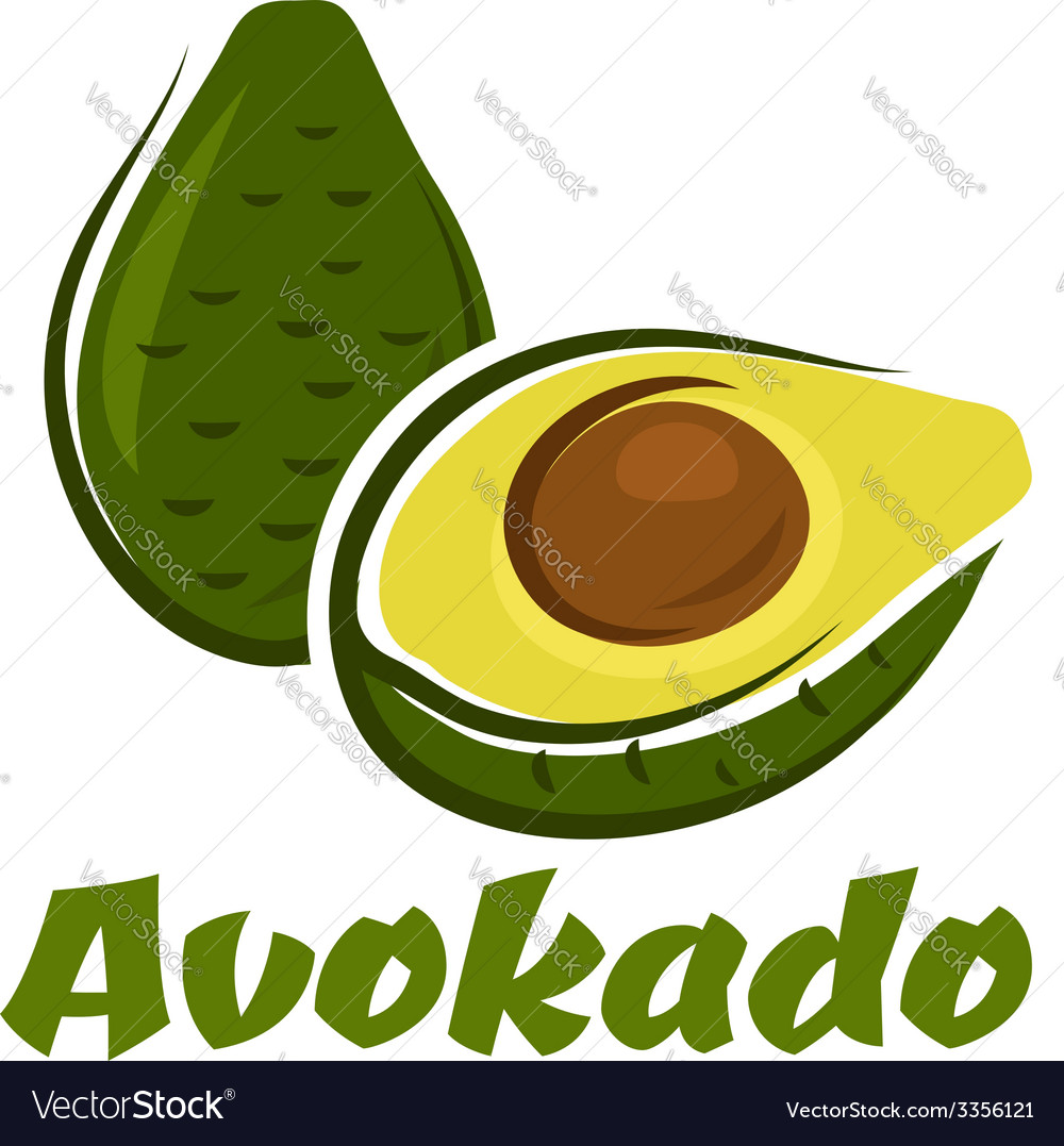 Green avokado fruit sketch vector | Price: 1 Credit (USD $1)
