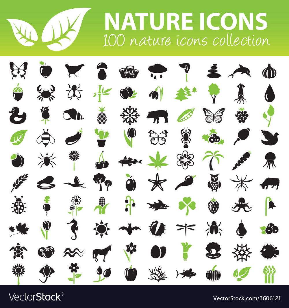 Nature icons collection vector | Price: 1 Credit (USD $1)
