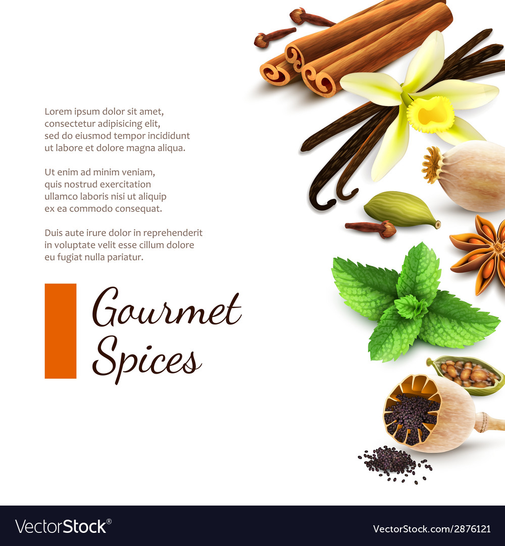 Spices on white background vector | Price: 1 Credit (USD $1)