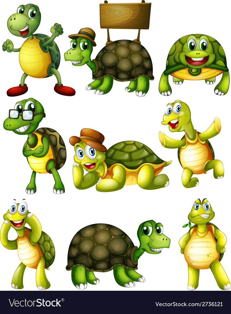 Turtle actions vector | Price: 1 Credit (USD $1)