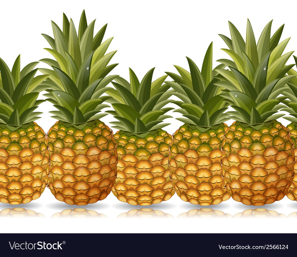 Seamless border of pineapple vector | Price: 1 Credit (USD $1)