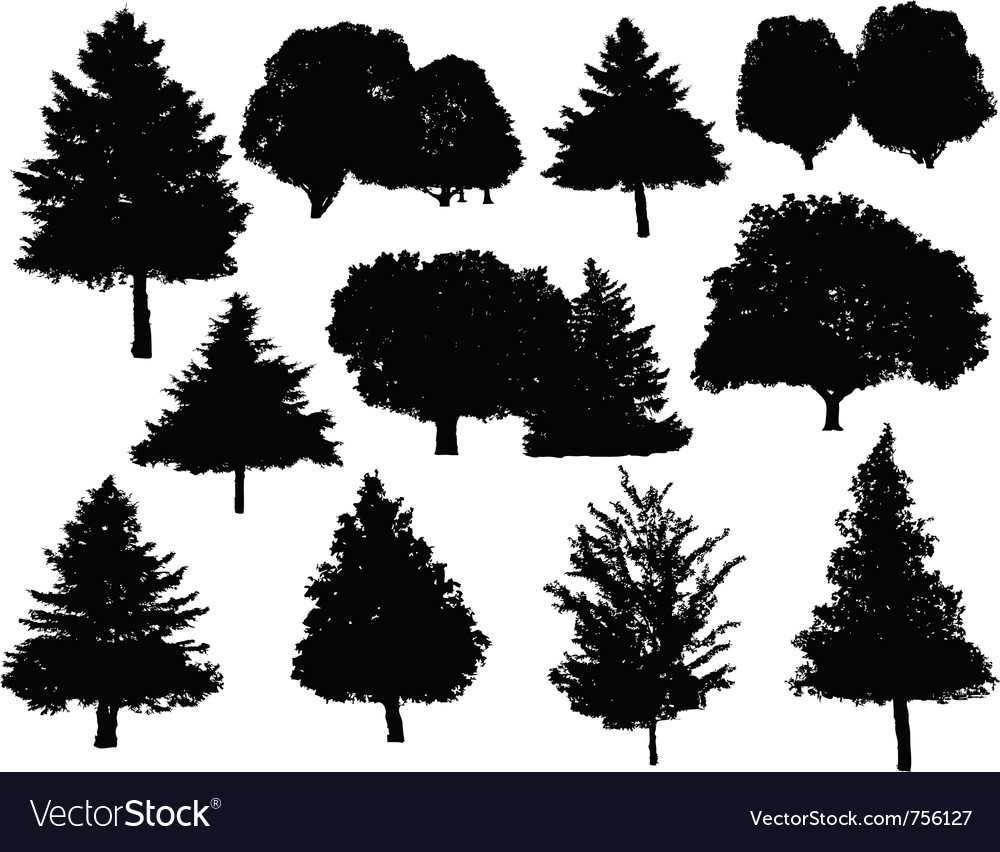 Tree silhouettes collection set vector | Price: 1 Credit (USD $1)