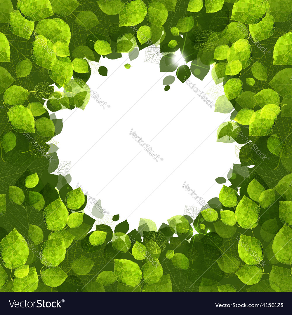 Summer banner of green foliage vector | Price: 1 Credit (USD $1)