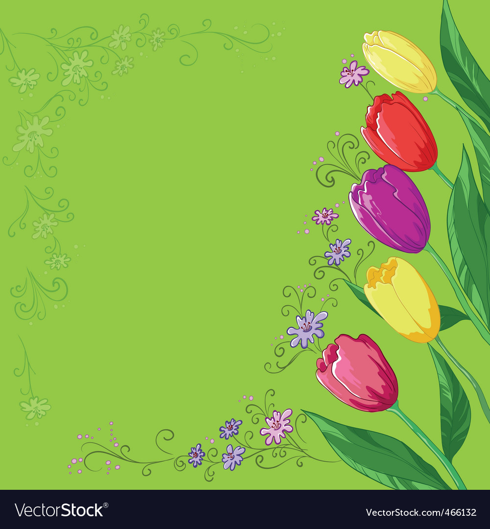 Flowers tulips on a green vector | Price: 1 Credit (USD $1)