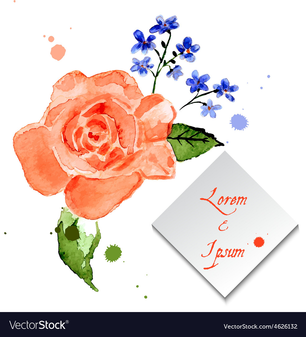 Rose and forget-me-flower for celebratory design vector | Price: 1 Credit (USD $1)