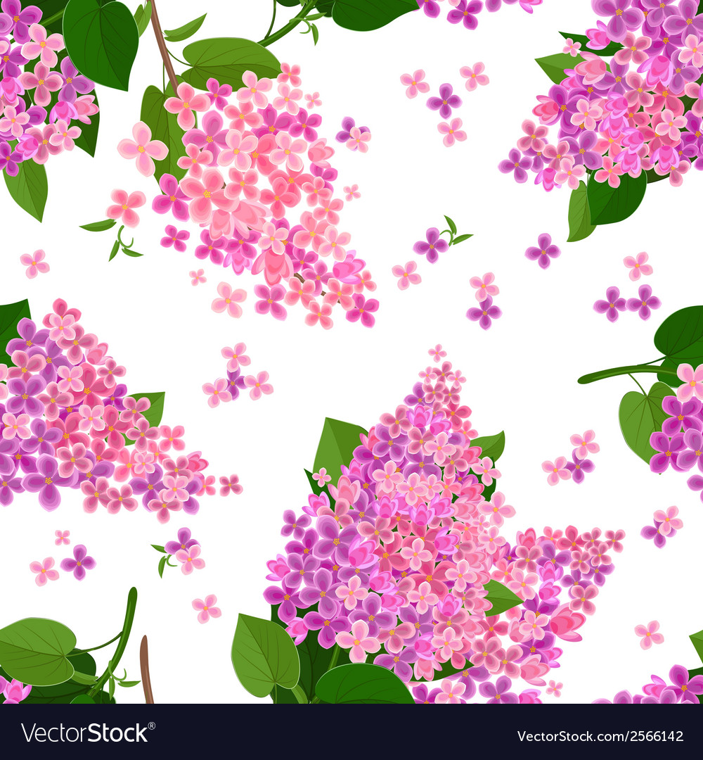 Seamless texture with flowers of lilac vector | Price: 1 Credit (USD $1)