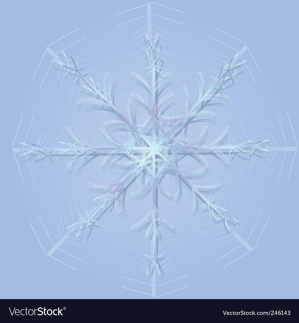 Snow flake vector | Price: 1 Credit (USD $1)
