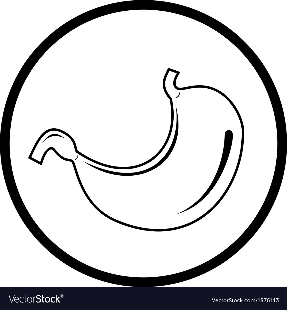 Stomach icon vector | Price: 1 Credit (USD $1)