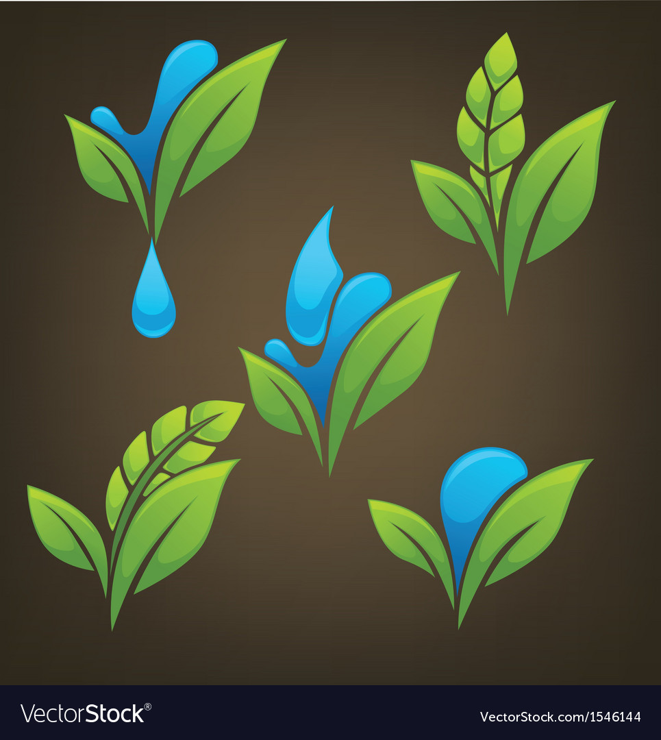 Plant and water vector | Price: 1 Credit (USD $1)