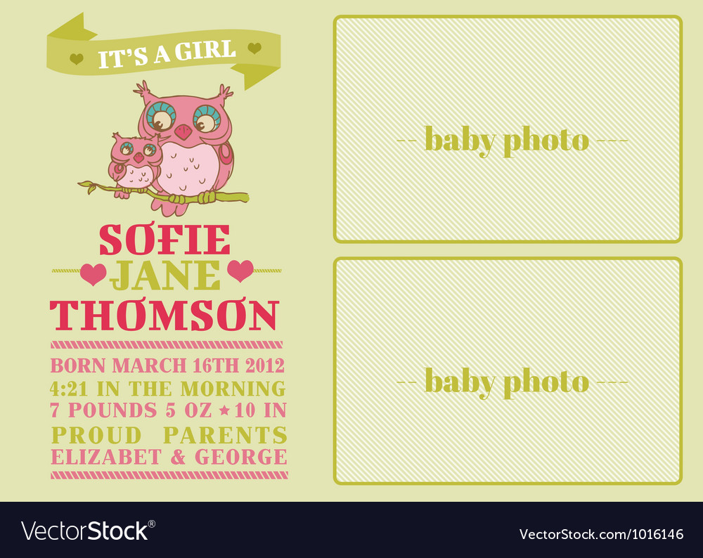 Baby arrival card with cute owl vector | Price: 1 Credit (USD $1)