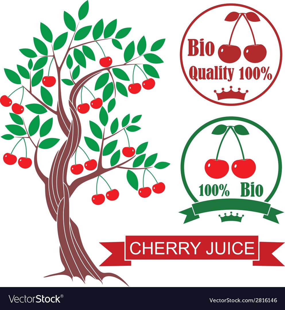 Cherry vector | Price: 1 Credit (USD $1)