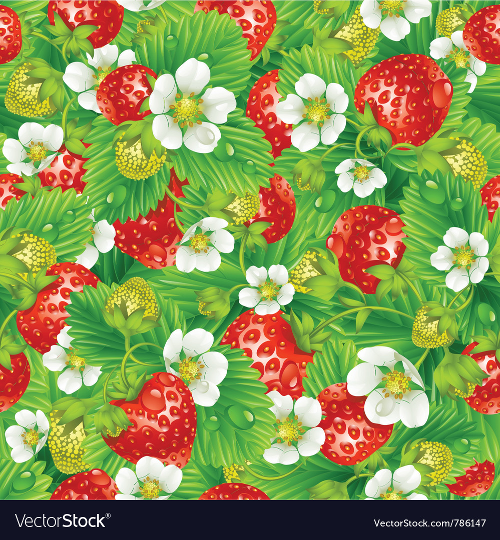 Strawberry seamless background vector | Price: 3 Credit (USD $3)
