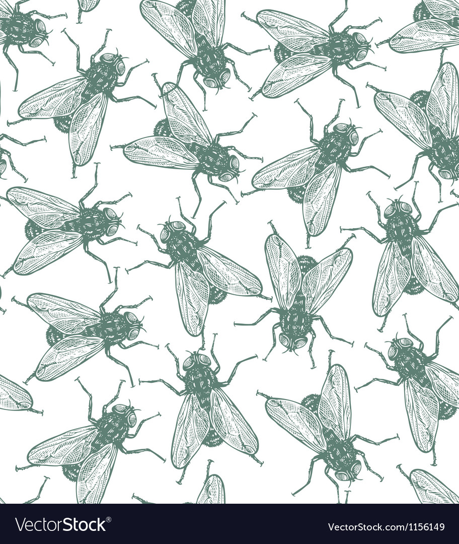 Seamless flies pattern in engraved style vector | Price: 1 Credit (USD $1)