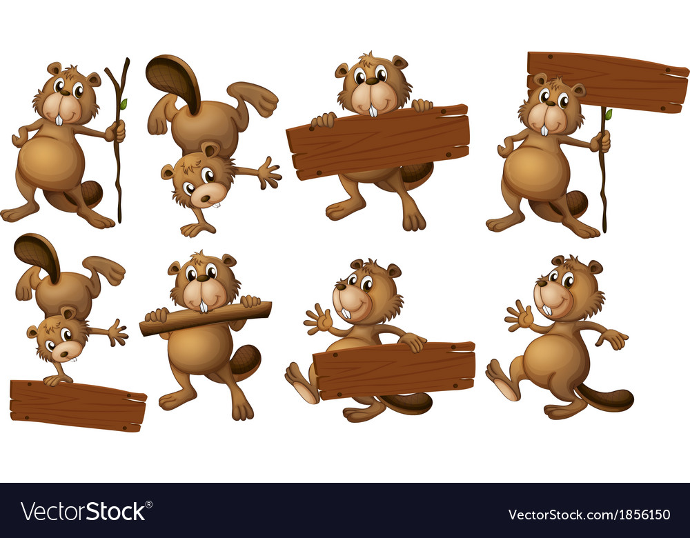A group of beavers with empty wooden boards vector | Price: 3 Credit (USD $3)