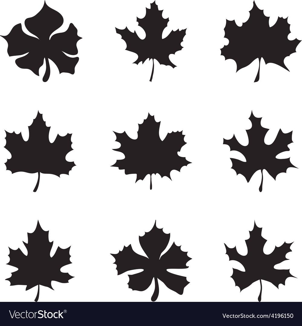 Set of nine maple-leaf silhouette vector | Price: 1 Credit (USD $1)
