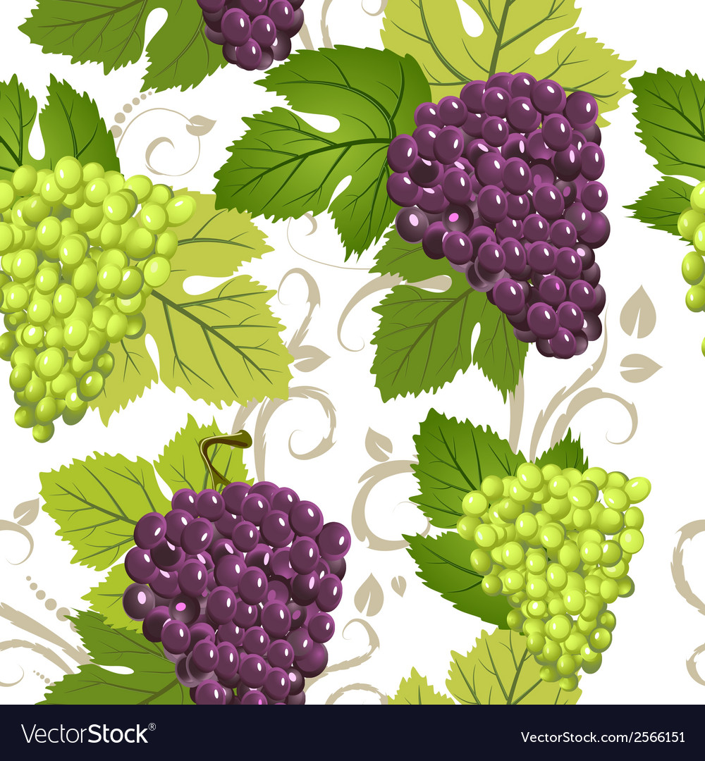 Seamless texture of grapes vector | Price: 1 Credit (USD $1)