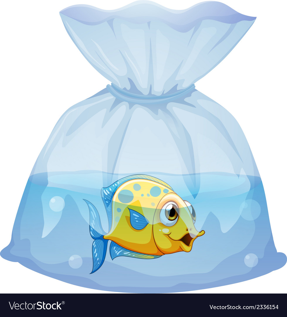 A fish inside the plastic pouch vector | Price: 1 Credit (USD $1)