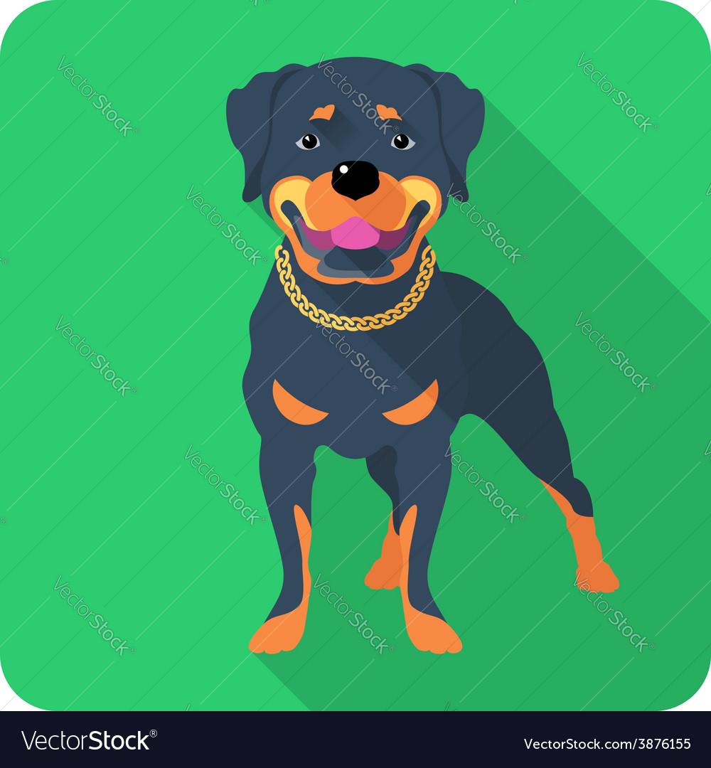 Dog rottweiler icon flat design vector   Price: 1 Credit (USD $1)
