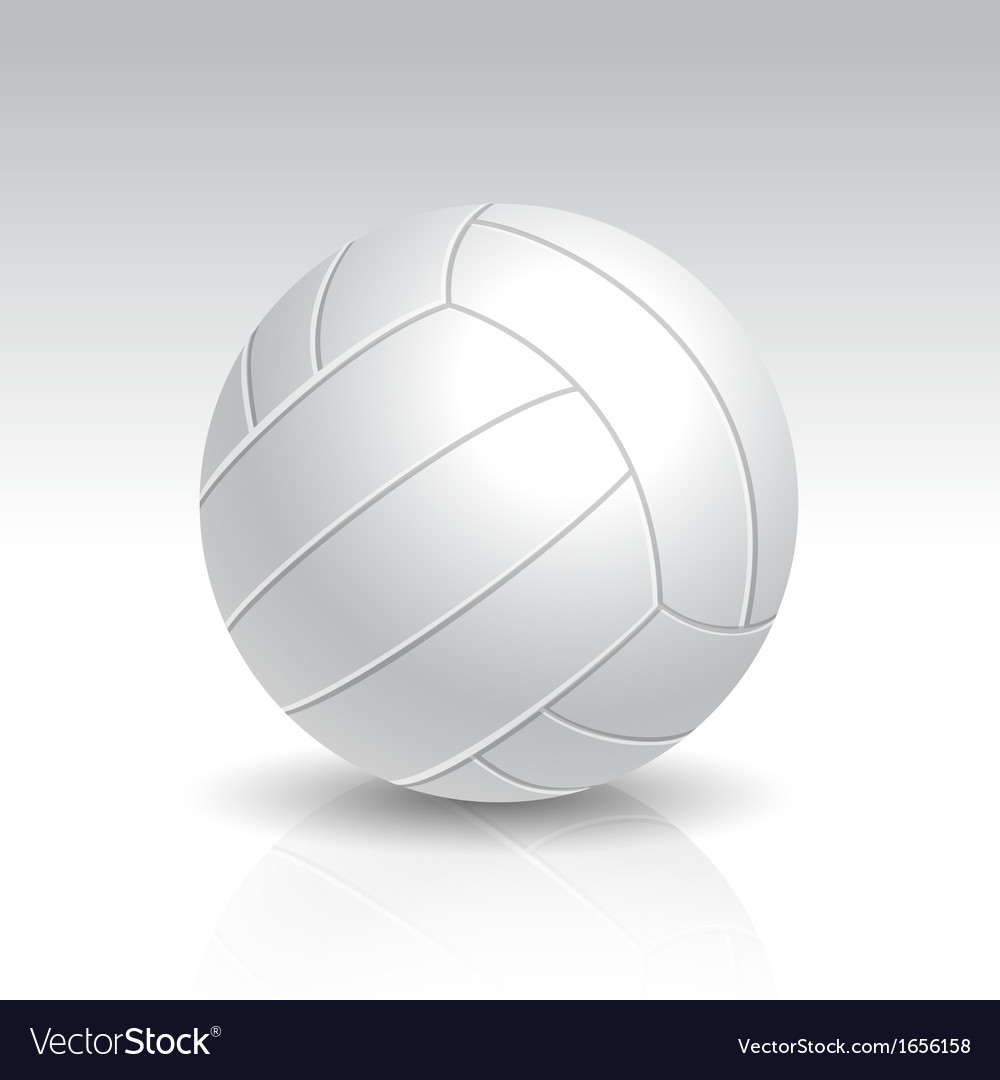 Realistic white volleyball vector | Price: 1 Credit (USD $1)