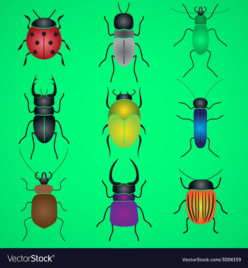Color bugs and beetles icons set eps10 vector | Price: 1 Credit (USD $1)