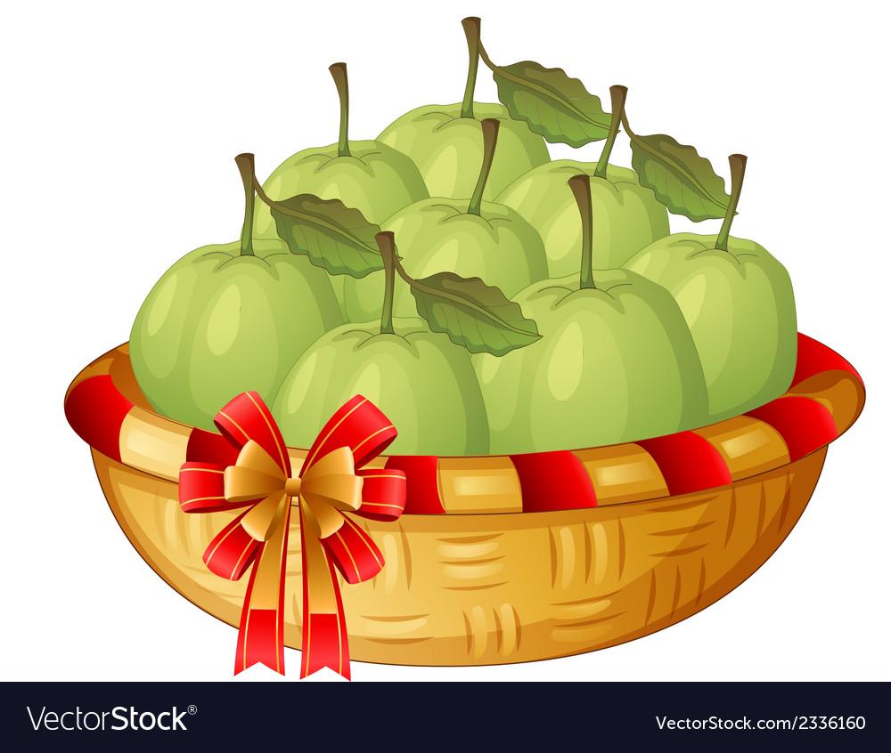A basket of guavas vector   Price: 1 Credit (USD $1)
