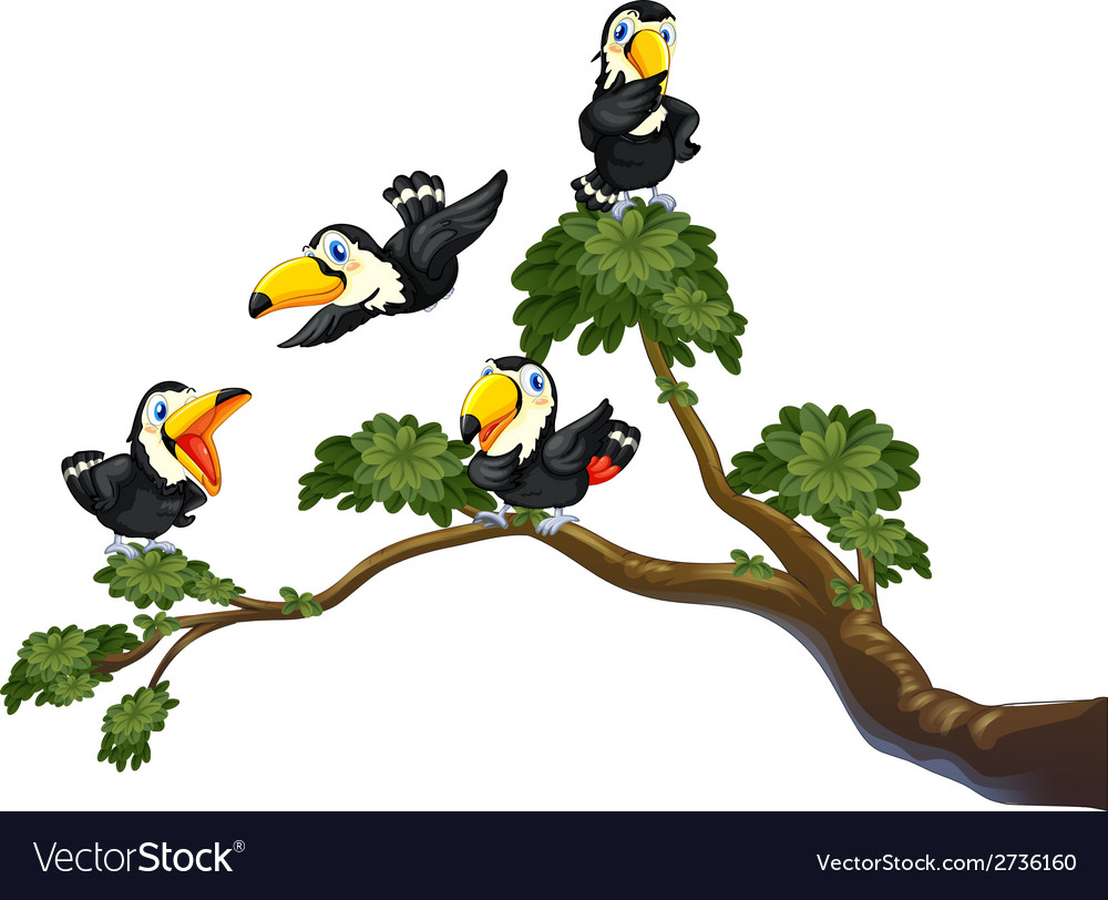 Toucan and tree vector | Price: 1 Credit (USD $1)