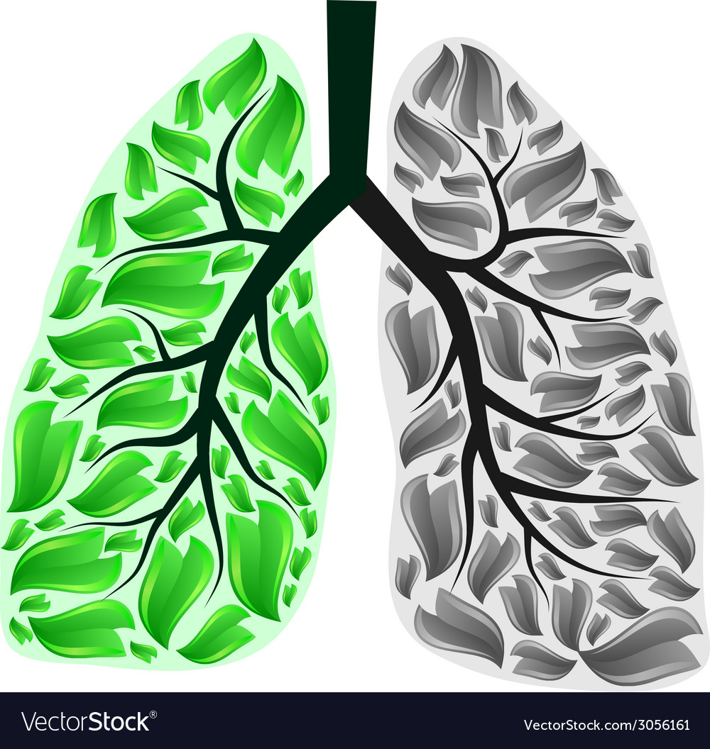 Lungs in danger vector | Price: 1 Credit (USD $1)