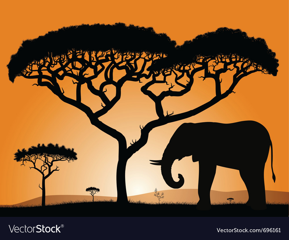 Savannah elephant vector | Price: 1 Credit (USD $1)