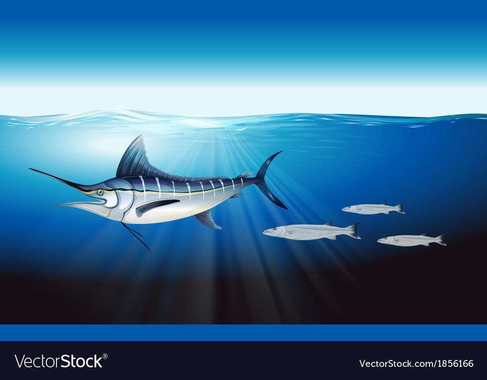 Atlantic blue marlin vector | Price: 1 Credit (USD $1)