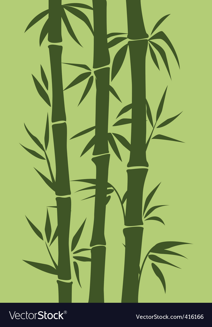 Bamboo tree vector | Price: 1 Credit (USD $1)