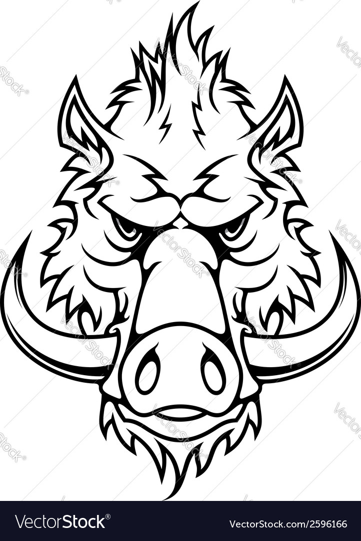 Head of a fierce wild boar vector | Price: 1 Credit (USD $1)