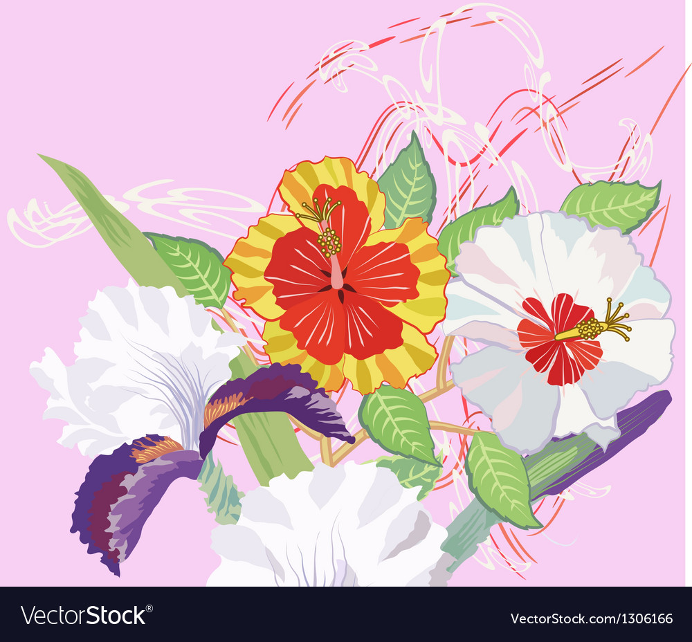 Hibiscus and iris on a pink background vector | Price: 1 Credit (USD $1)
