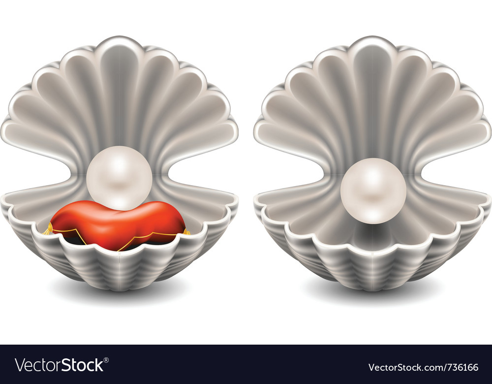 Seashell with pearl vector | Price: 1 Credit (USD $1)