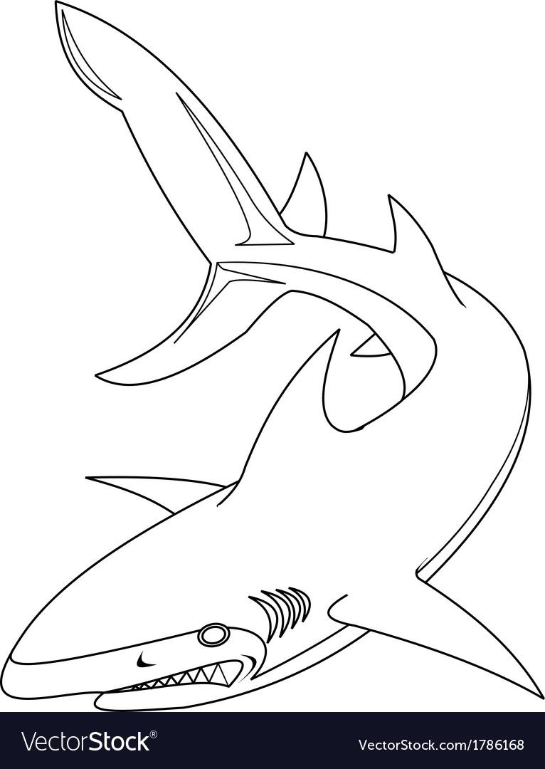 Shark outline vector   Price: 1 Credit (USD $1)