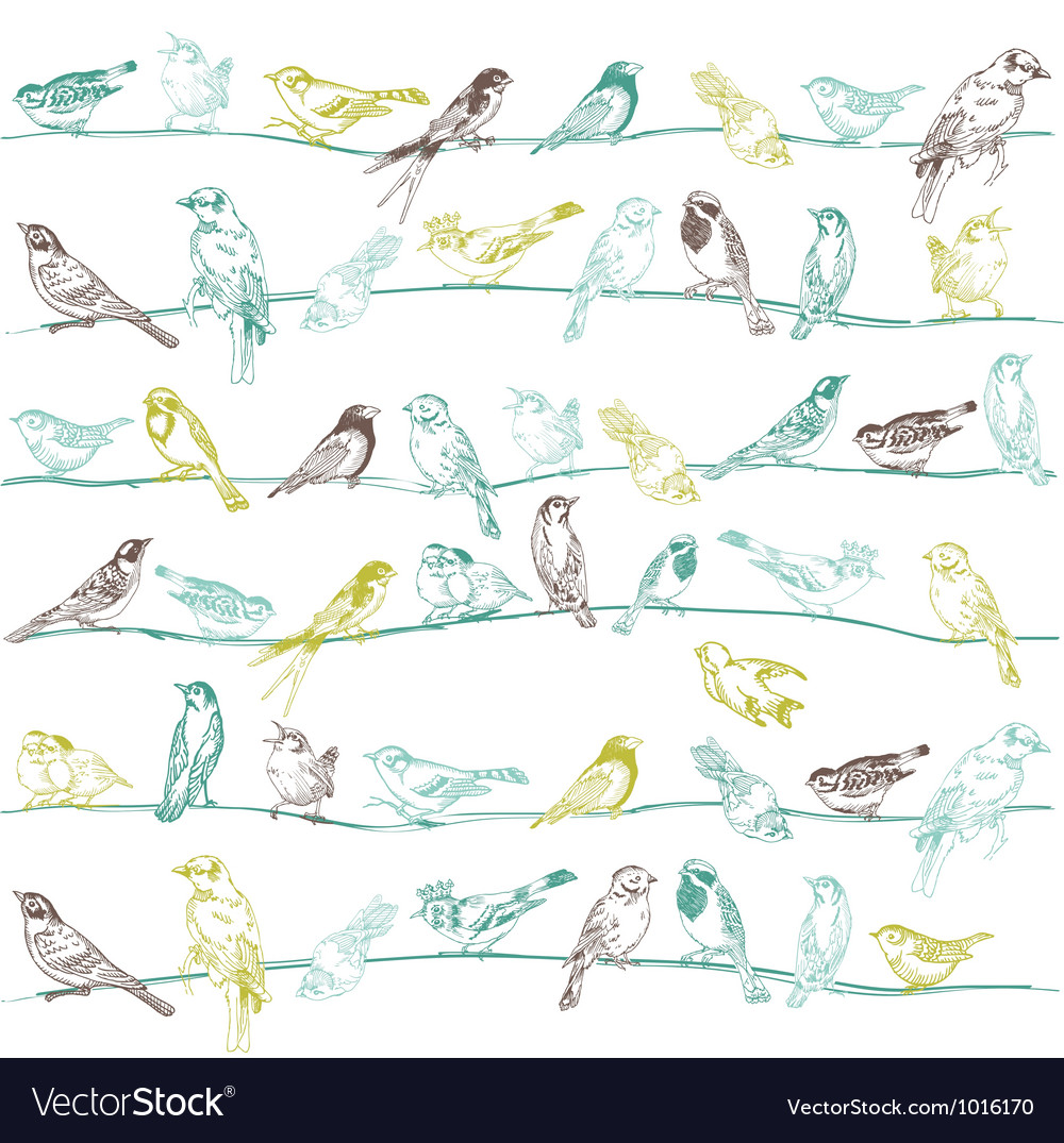 Birds seamless background vector | Price: 1 Credit (USD $1)