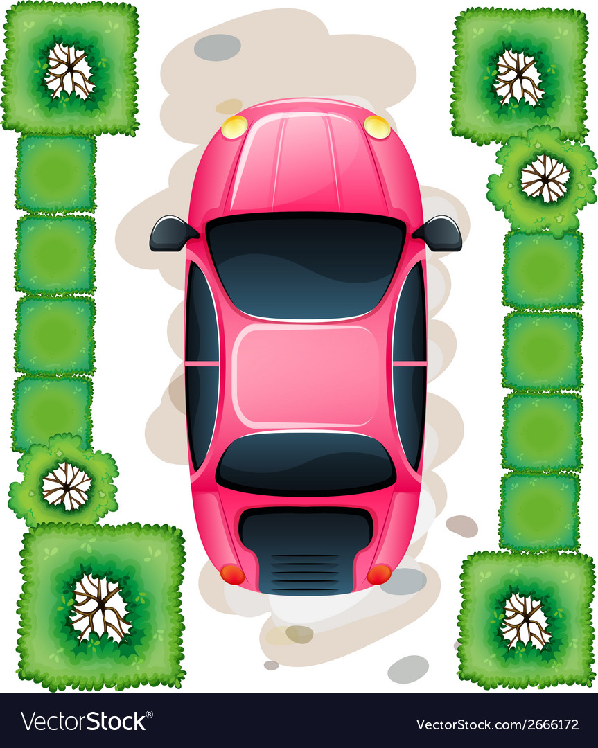 A topview of the parked pink car vector | Price: 1 Credit (USD $1)