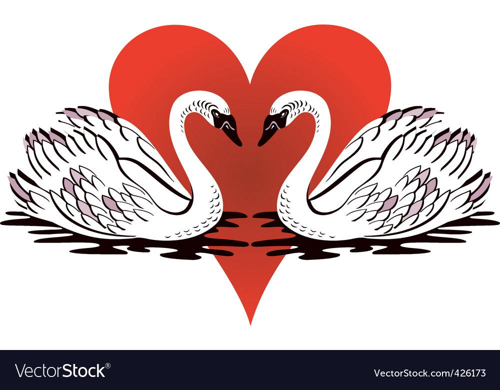 Love swans vector | Price: 1 Credit (USD $1)