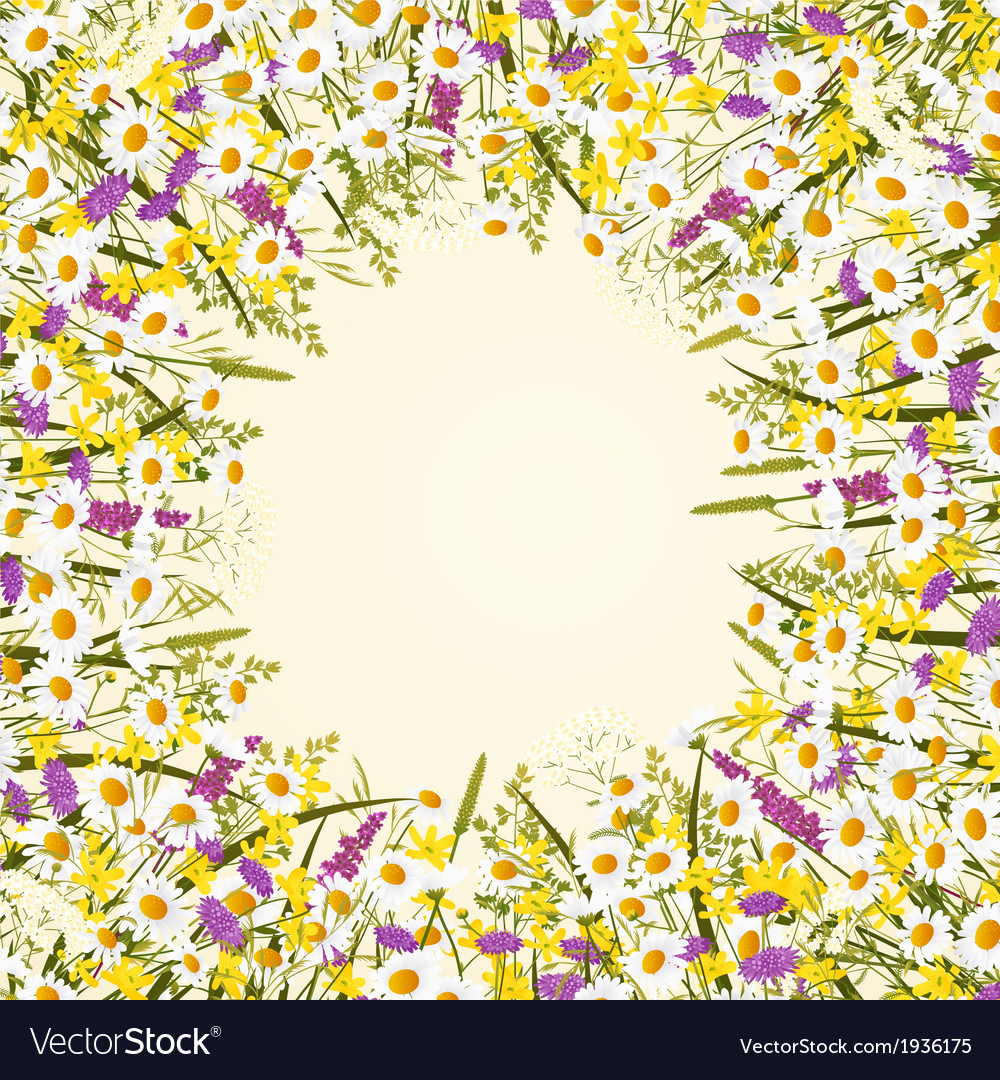 Wild flower frame vector | Price: 1 Credit (USD $1)