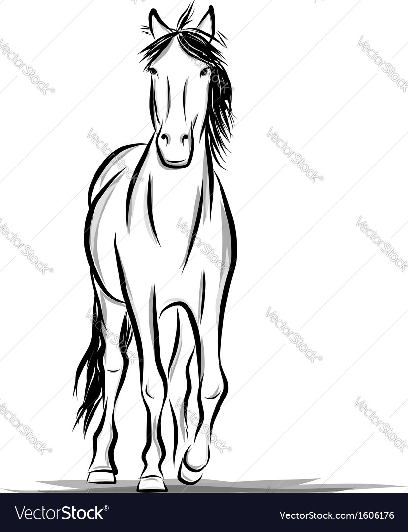 Horse sketch for your design symbol of 2014 year vector | Price: 1 Credit (USD $1)