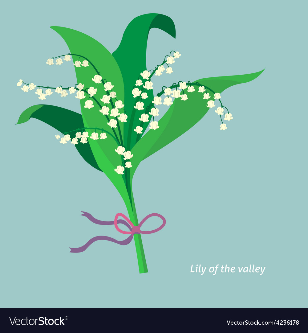 Flat design lily of the valley vector | Price: 1 Credit (USD $1)