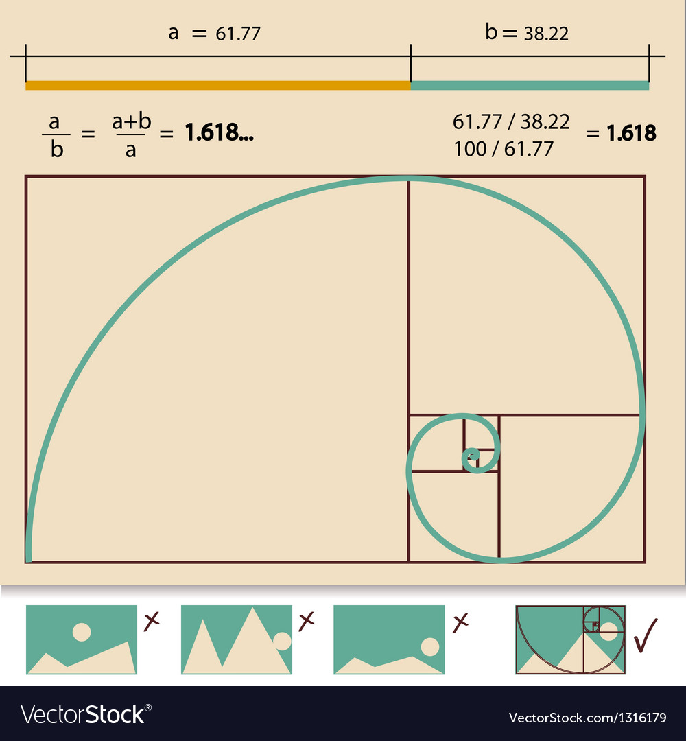 Golden ratio golden proportion vector | Price: 1 Credit (USD $1)