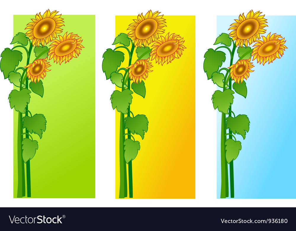 Sun flowers vector | Price: 1 Credit (USD $1)