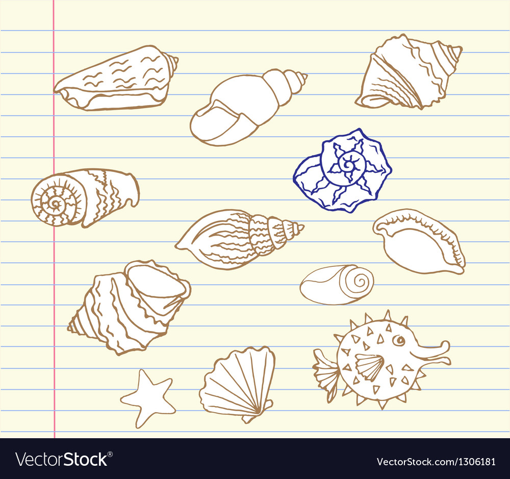 Notebook set with cockleshell vector | Price: 1 Credit (USD $1)