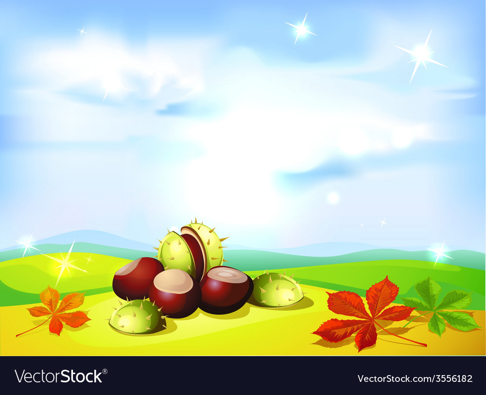 Autumn landscape background with chestnuts- vector | Price: 1 Credit (USD $1)