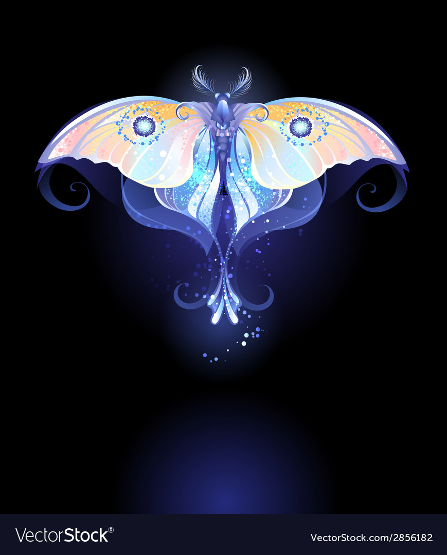 Moonlight butterfly vector | Price: 1 Credit (USD $1)