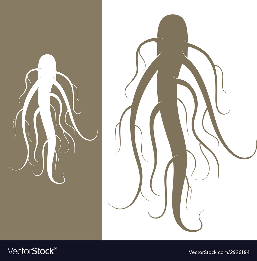 Ginseng vector | Price: 1 Credit (USD $1)