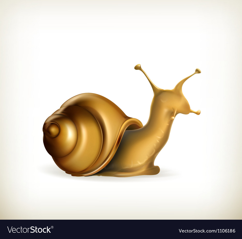 Snail vector | Price: 1 Credit (USD $1)